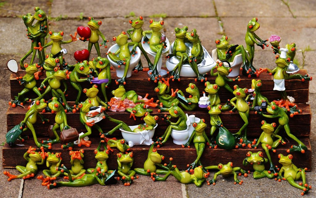 frogs-1371297_1920